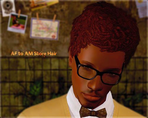 Sims 3 hair, hairstyle, afro, male