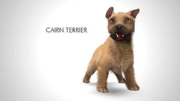 Sims 3 pet, pets, dog, Cairn Terrier