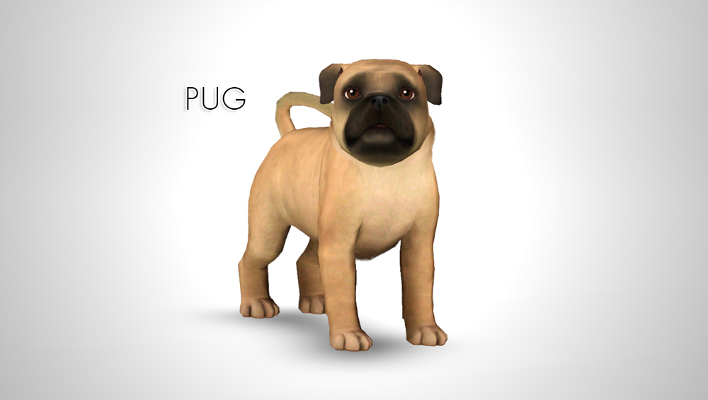 sims 3 dog download