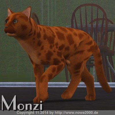Sims 3 cat, cats, pets