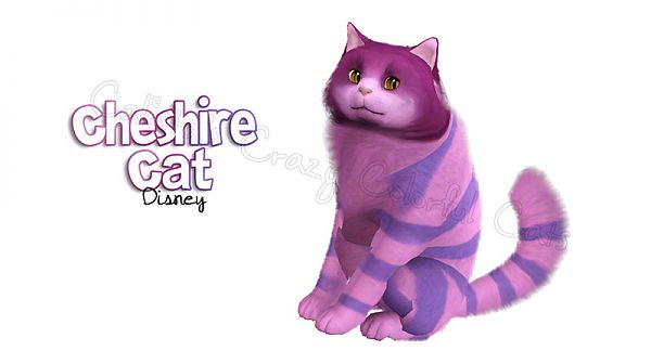 Sims 3 cat, pet, fantasy