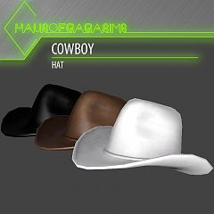 Sims 3 hat, cowboy hat, accessory