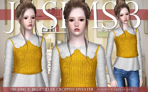 Sims 3 skirt, top, sweater