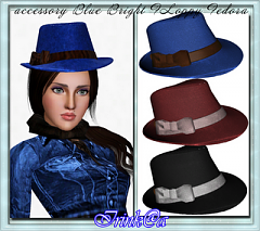 Sims 3 shoes, hat, accessories