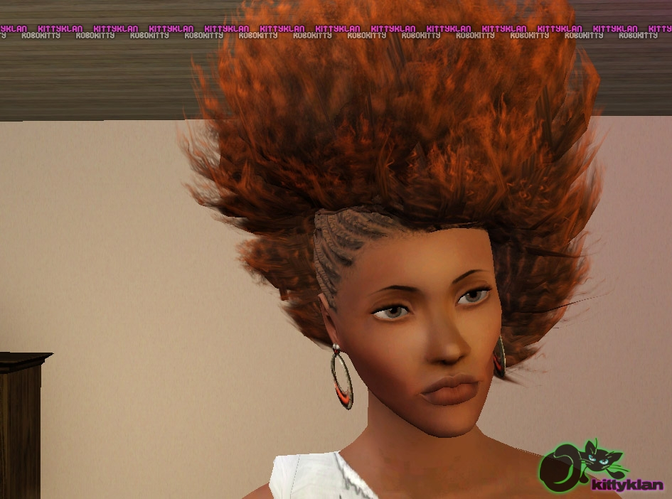 Strange Sims 3 Updates Kitty Klan Half Braided Afros Hair By Robbokitty Short Hairstyles For Black Women Fulllsitofus