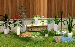 Sims 3 plants, flowers, potted, decor, garden, flower pot