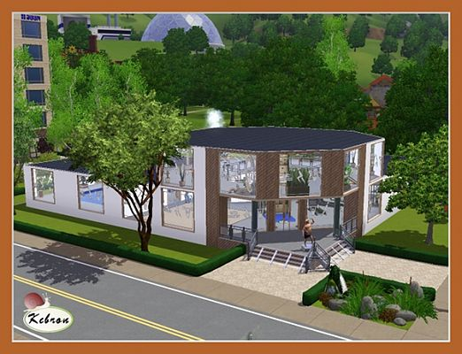Sims 3 fitness, studio, lot, community