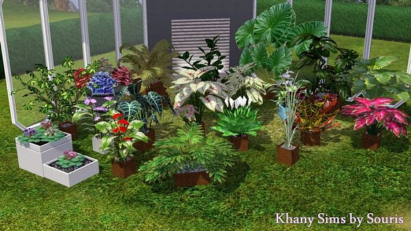 Sims 3 flowers, plants, sims 3
