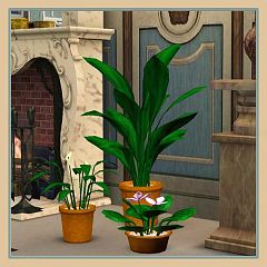 Sims 3 flowers, plants, objects, decor