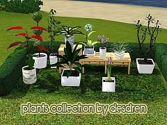Sims 3 plants, flowers, garden, potted