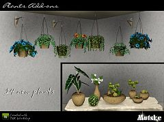 Sims 3 plants, flower, pot