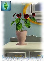 Sims 3 orchid, flower, plant