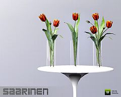 Sims 3 tulips, flowers, decoration